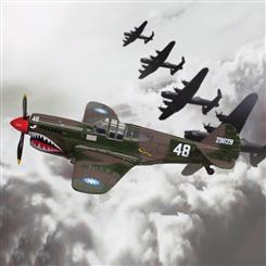 P-40 Warhawk Die-Cast Model