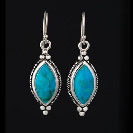 Rain Dance Turquoise Earrings (9 ctw)