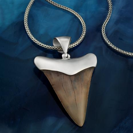 "Shark Tooth Pendant (large) plus 22"" Bali Naga Chain"